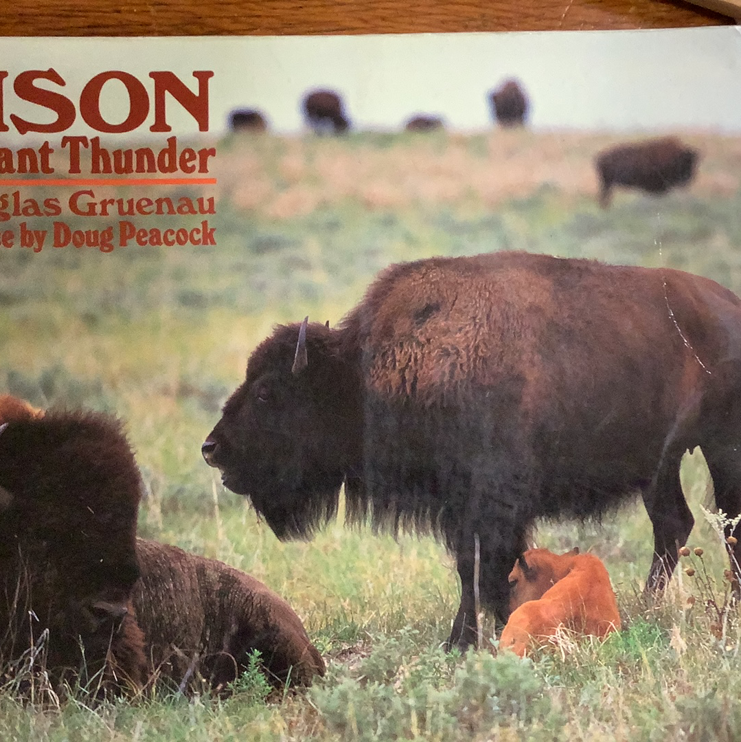 BOOKS - BISON Distant Thunder