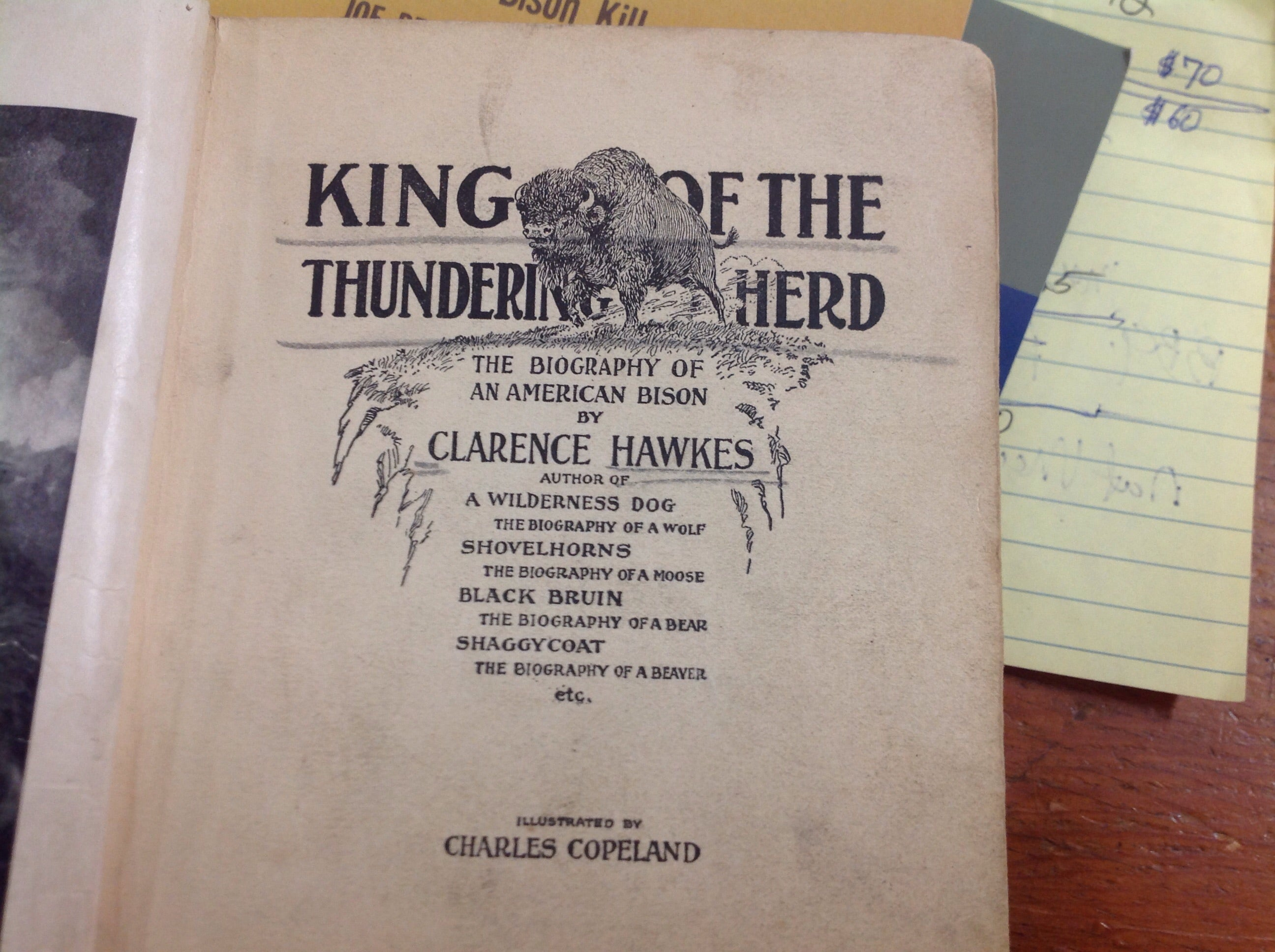 BOOKS - King Of The Thundering Herd