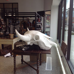3 times lifesize bison bull skull - the Really Big Guy -