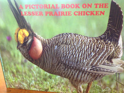 A Pictorial Book on the Lesser Prairie Chicken