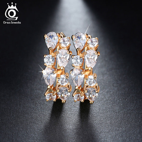 Charming Clear Cubic Zirconia Stud Earrings