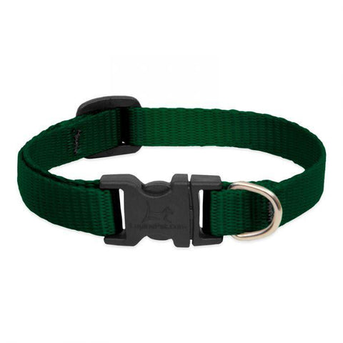 Lupine Basics Green Collar