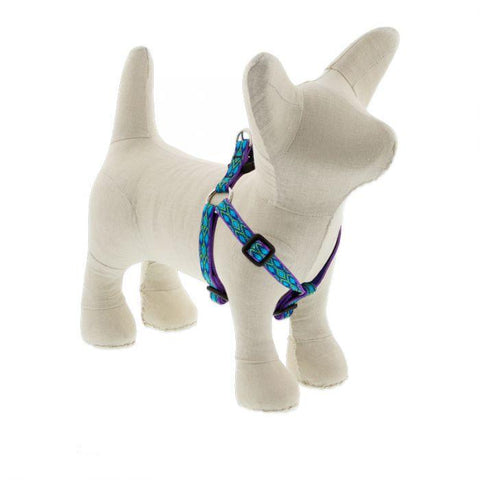 Lupine Original Rain Song Step In Harness