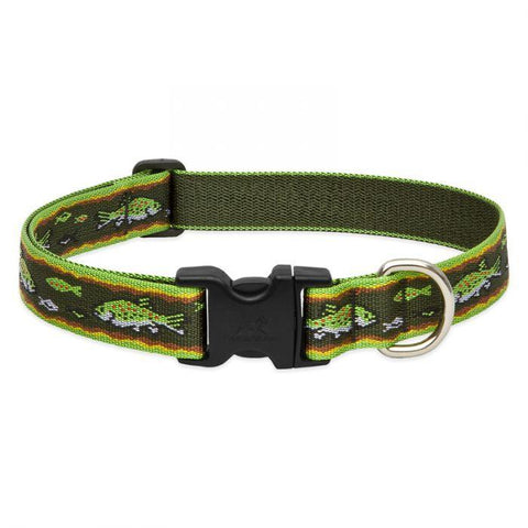 Lupine Original Brook Trout Collar