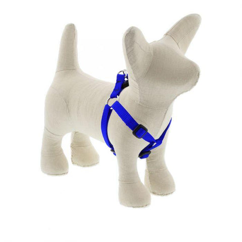 Lupine Basics Blue Step In Harness