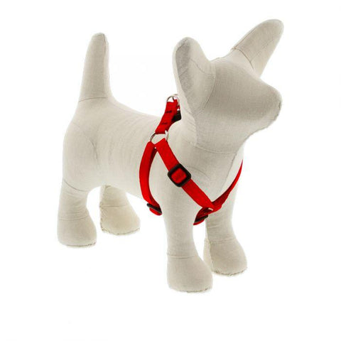 Lupine Basics Red Step In Harness