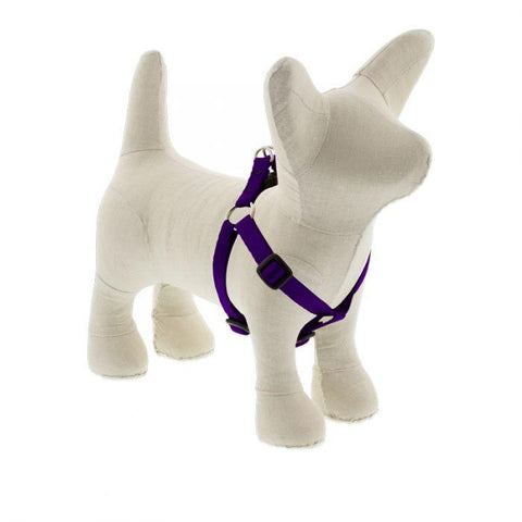 Lupine Basics Purple Step In Harness