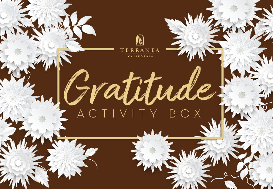 Family Gratitude Activity Boxes