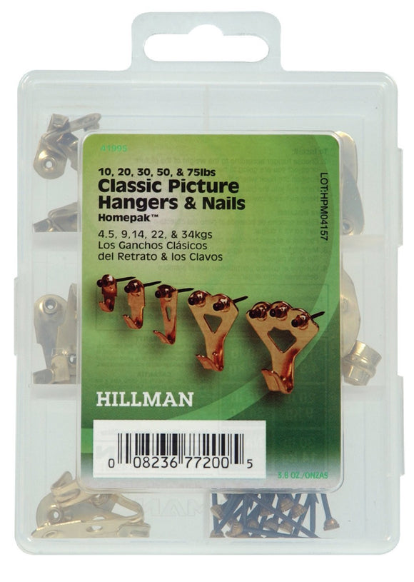 Homepak Assorted Picture Hangers + Nails