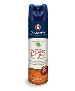 Guardsman Clean & Polish Aerosol