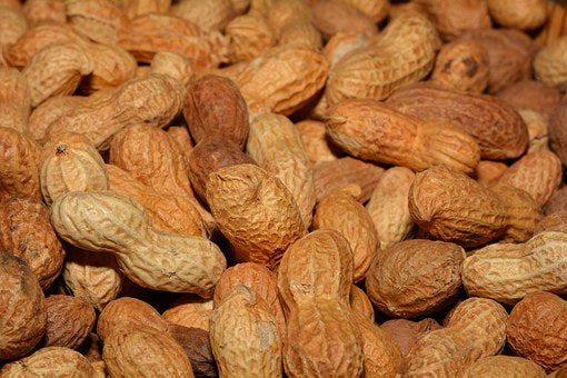 Why are Peanuts Healthy?