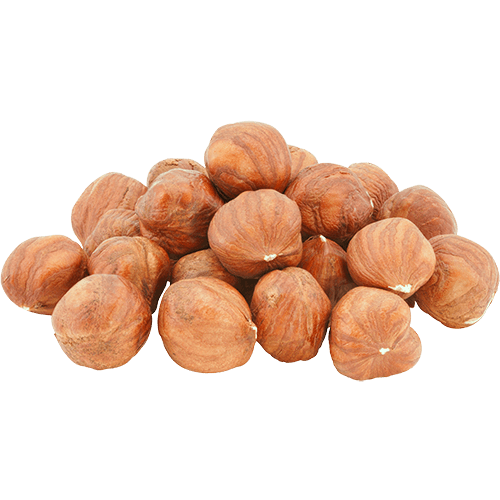 Shelled Raw Filberts (Hazelnuts)