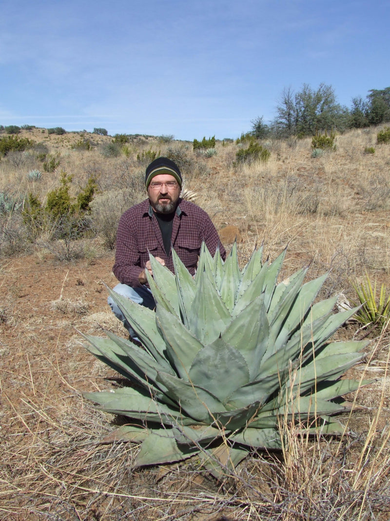 Agave havardiana with Kelly in the Davis Mountains, TX 2006