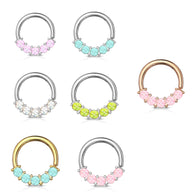 5 Epoxy Stone Front Facing Set All Surgical Steel Bendable Nose Septum Cartilage Daith