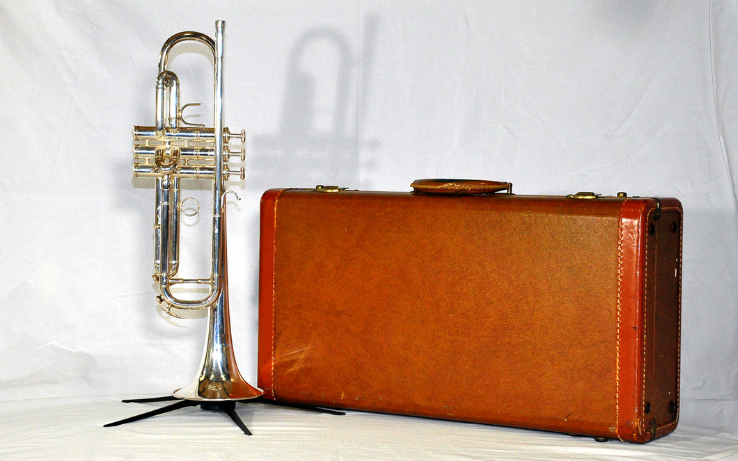Destino 5 Star Bb Trumpet