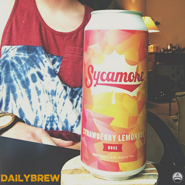 Strawberry Lemonade Gose | Sycamore Brewing