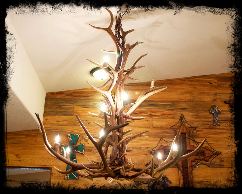5' Genuine Elk Antler Chandelier