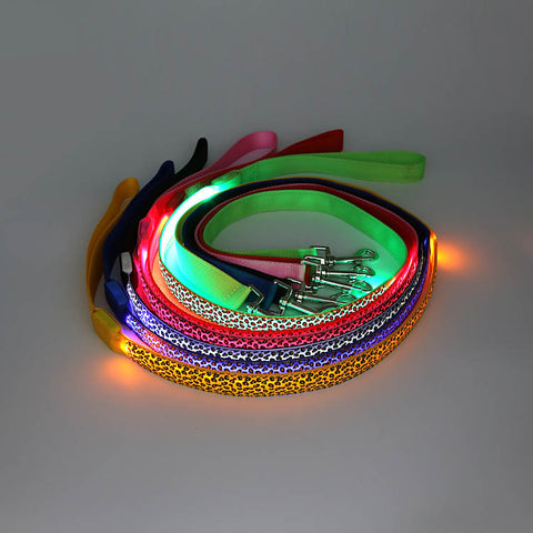 LED Leash