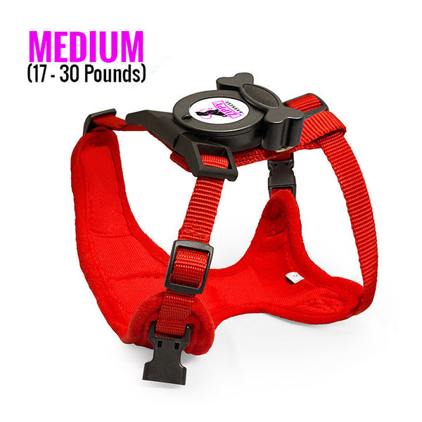 Zippy Harness M Built-In Leash and Harness