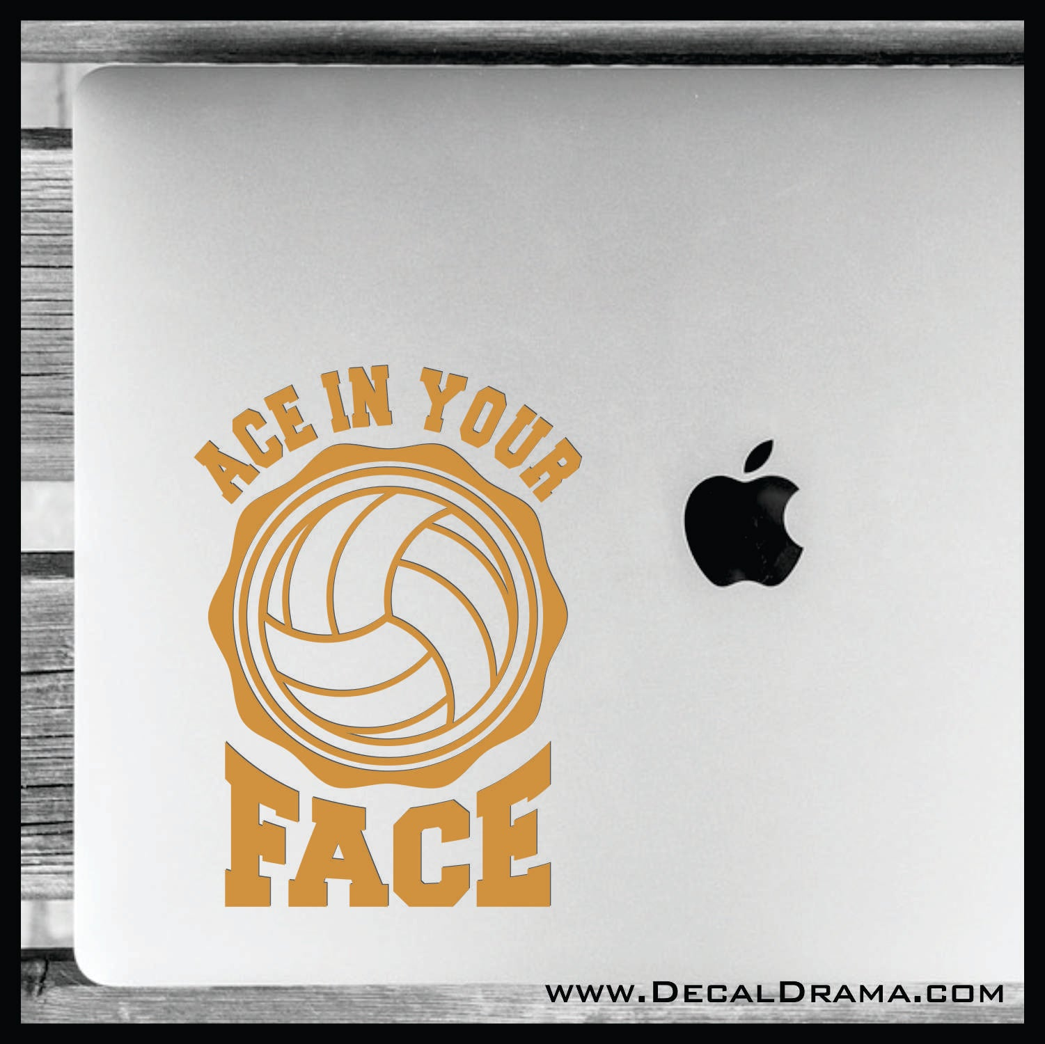 Ace in Your Face Volleyball Vinyl Car/Laptop Decal