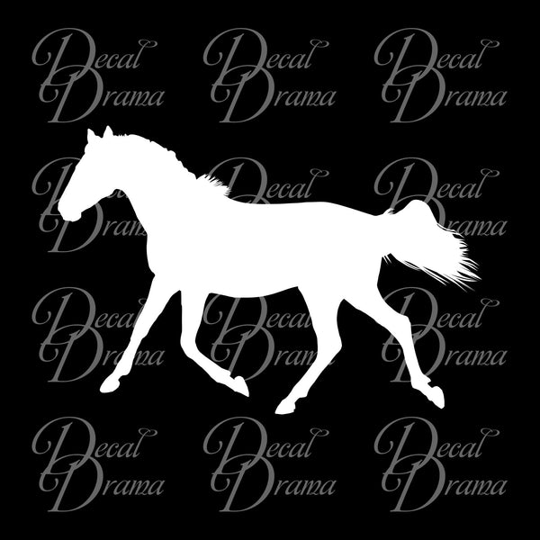 Black Beauty Vinyl Car/Laptop Decal
