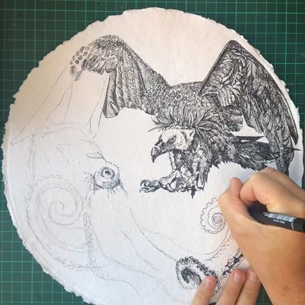 Dickie Artist, octopus obsessed Contemporary New Zealand artist drawing Octopus Versus Vulture in ink pen