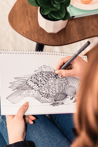 Penny Royal design drawing a New Zealand Bird in ink pen