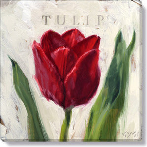 Gygi Red Tulip | Canvas Wall Art | Small