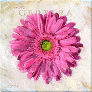 Gygi Pink Gerbara | Canvas Wall Art | Small