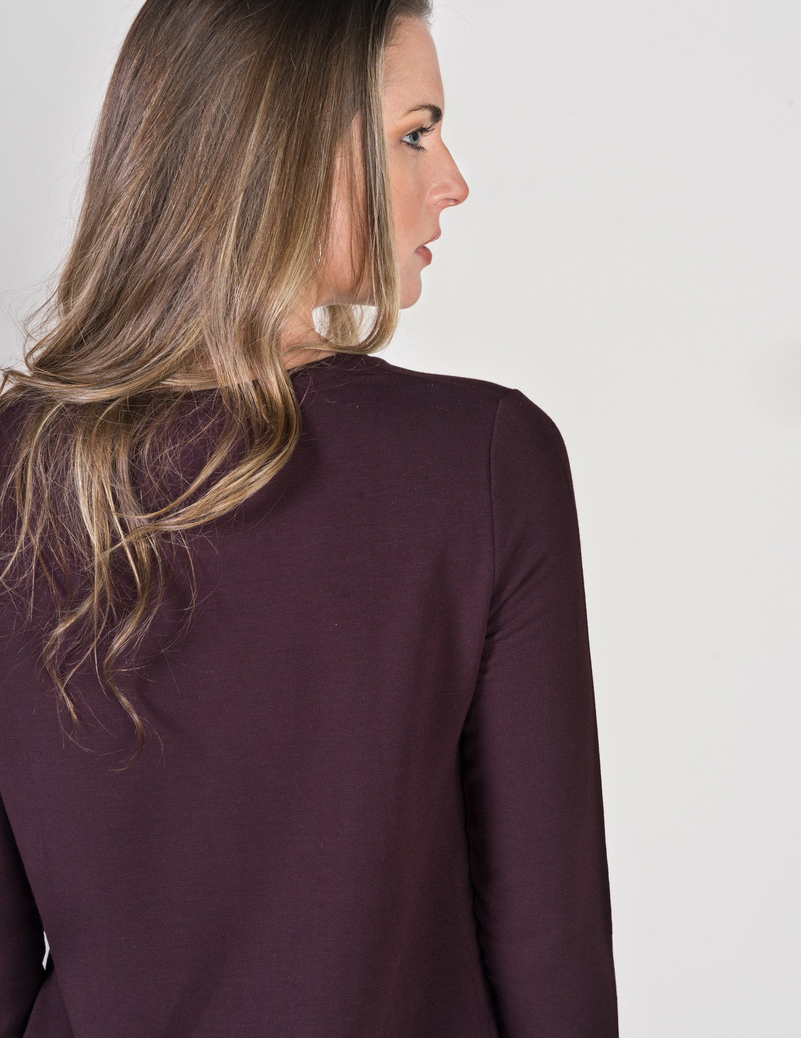 Majestic Long Sleeve French Touch Crewneck in Aubergine