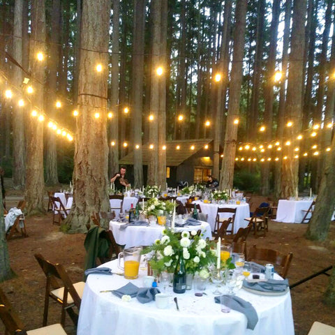Kitsap Memorial State Park Wedding.Tales Of A Traveling Tea Queen Vol 2 Tea Queens