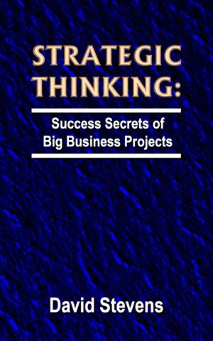 Strategic Thinking: success secrets of big business projects by David Stevens