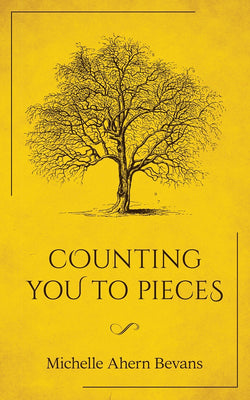 Counting You to Pieces by Michelle Ahern Bevans
