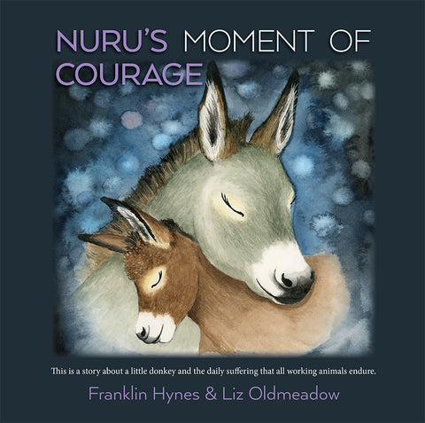 Nurus Moment of Courage front cover