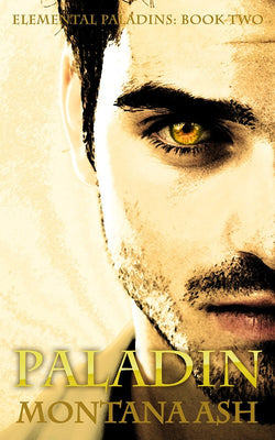 Paladin (Elemental Paladins Book Two) by Montana Ash