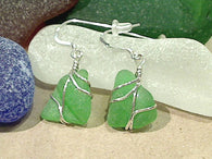 Green Sea Glass And Sterling Silver Earrings - Small Size