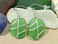 Green Sea Glass And Sterling Silver Earrings - Large Size