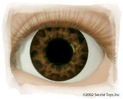 Real Eyes Brand Doll Eyes - Tiger Brown