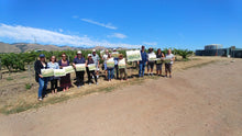 Baileyana Winery Plein Air Workshop
