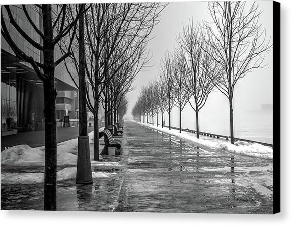 Path Through Fog - Canvas Print