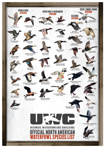 UWC OFFICIAL NORTH AMERICAN WATERFOWL SPECIES POSTER