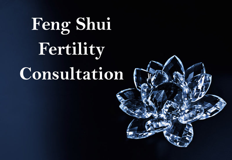 Feng Shui Career Consultation Fengshuibest