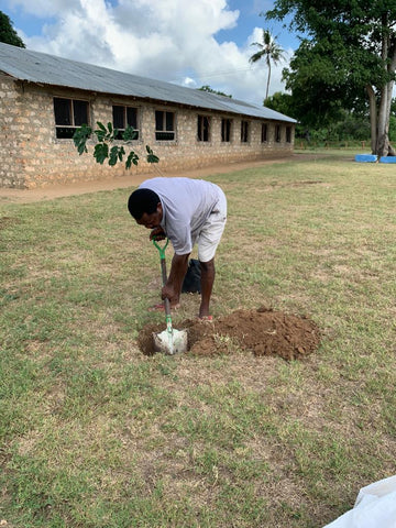 40 trees have been planted this last month of March