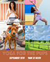Yoga/Meditation For The Pups