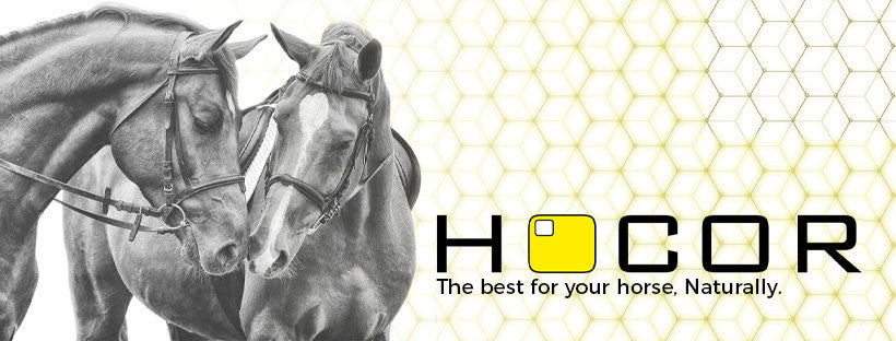 Hocor Feeds The best for your horse, naturally