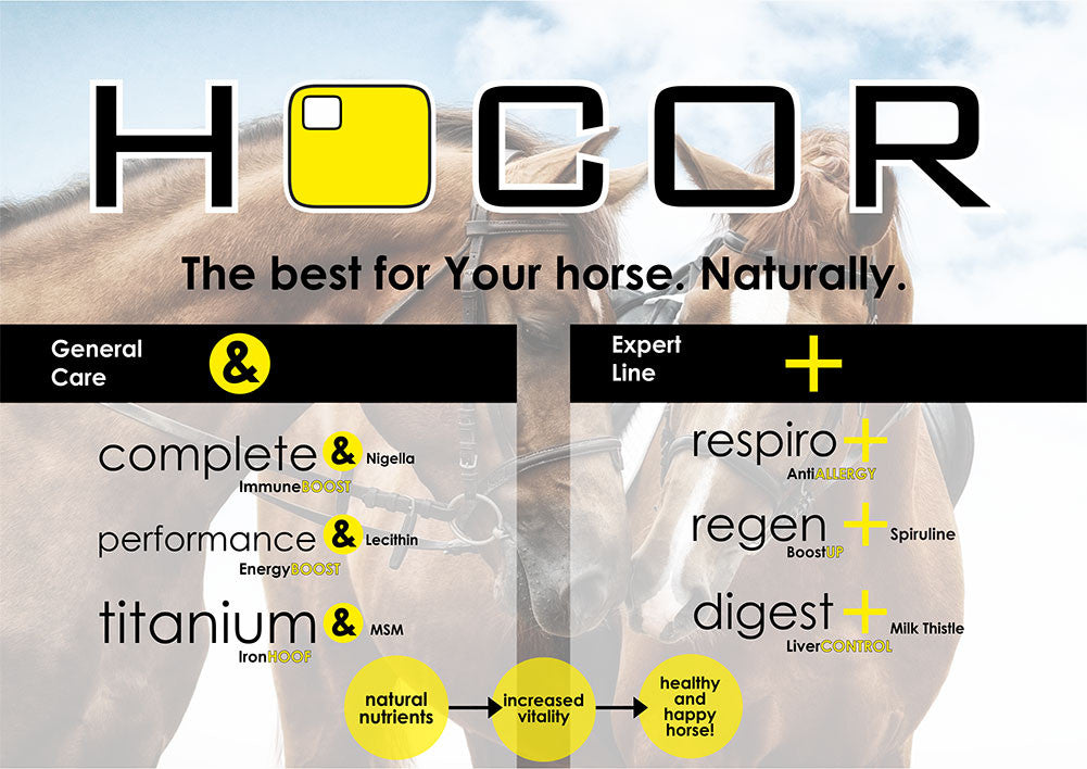 Hocor Horse Supplements Banner 2