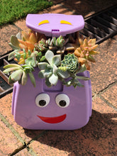 Purple Succulent Eater