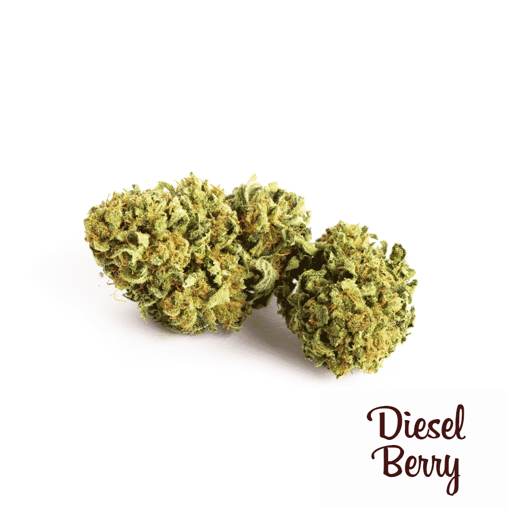 15g Diesel Berry hemp flowers UK - CBD - and Hemp flowers UK