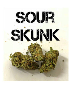 Sour Skunk -Hemp Sativa L 100g wholesale CBD flowers - and Hemp flowers UK