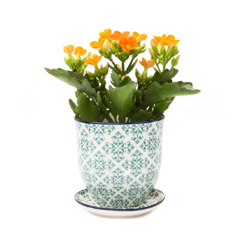 Liberte ceramic plant pot with drainage and saucer green diamonds